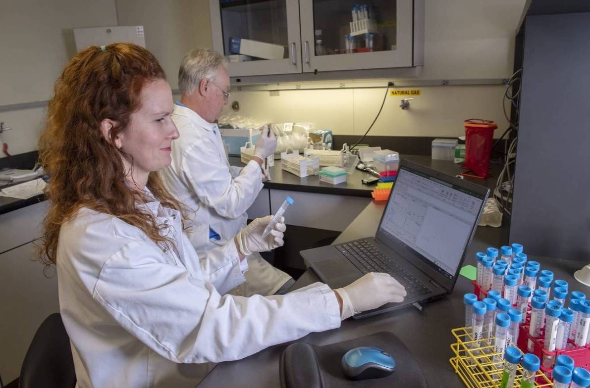 Two scientist sitting at their computers cataloging sample information.
